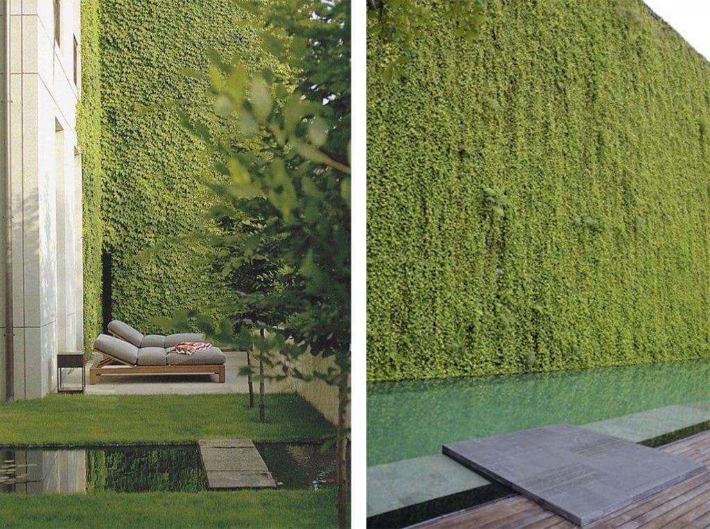LaMenara_Landscapedesign_VerticalGardens_2